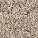 00079-quinoa