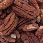 15461-noix-pécan-crues-décortiquées