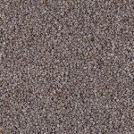 16185-graines-chia