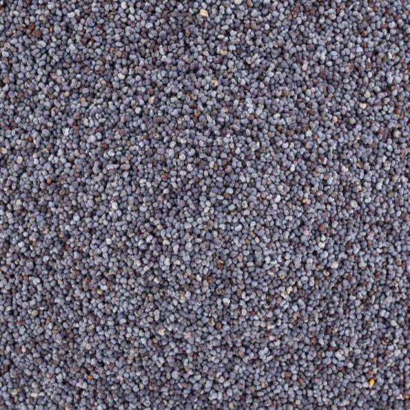 16188-graines-pavot-bleu