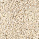 60873-graines-sesame-blanc